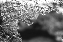 Protection contre le vandalisme avec la multirisque professionnelle : prix et devis